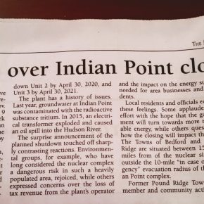 """Concerns over Indian Point closing plan"" by Lucie Couillard"