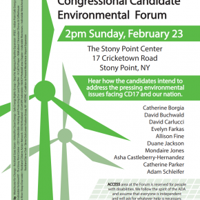 District 17 Congressional Candidate Environmental Forum Flyer